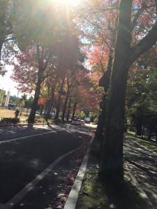 金沢ライブ